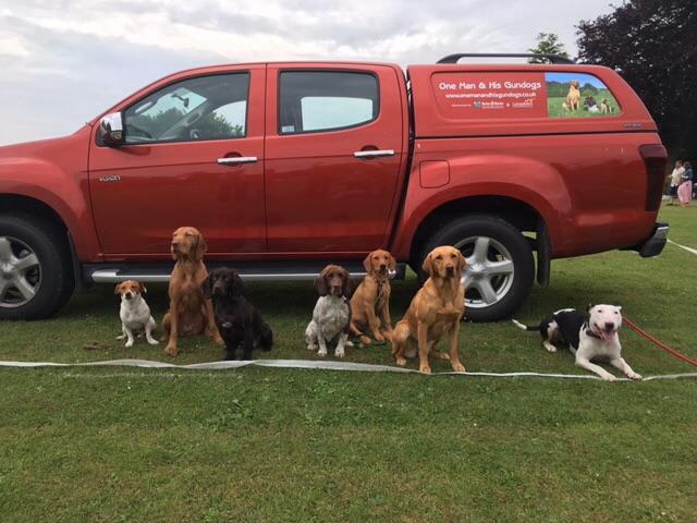 Dog Training Wiltshire